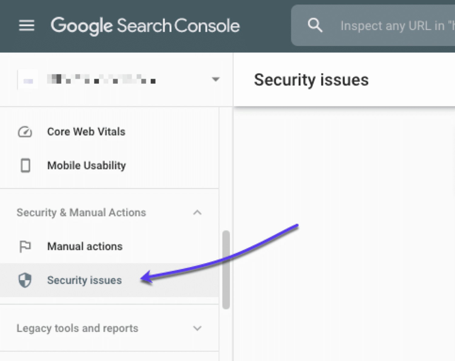 security issues option