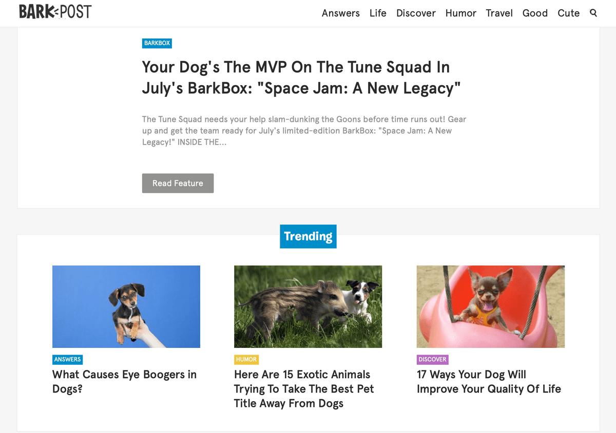 BarkPost content marketing example B2C